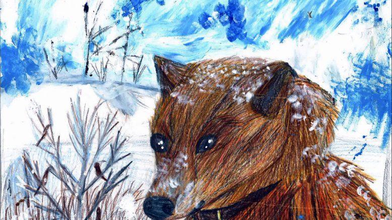 """Iiläisen Saaga Päkkilän työ """"Onnea on... koira lumessa"""" valittiin finaaliin valtakunnallisessa piirustuskilpailussa."""