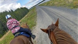 Isoimpia teitä vältellen ja paikallisilta neuvoja kysellen - se on Ritva Lampisen taktiikka, kun hän ratsastaa läpi Suomen. Kuvan on napannut Päivi ojala, joka saatteli Lampisen matkaan Yli-Iistä alkuviikosta.