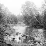 Tervatynnyreitä Jolosjoessa vuonna 1913. Kuva: Museovirasto, kansantieteen kuvakokoelma, Samuli Paulaharjun kokoelma.