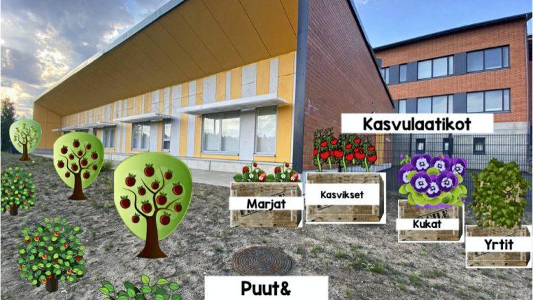 Ylikiimingin päiväkodissa juhlavuosi näkyy myös yhteisöllisen kasvimaaprojektin kautta, johon on saatu Ebenser-säätiön rahoitusta. Tulevana kesänä päiväkodin pihamaa kukkii monin eri tavoin.