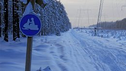 Virallisen moottorikelkkareitin reittisuunnitelmat Kiimingistä Ouluzonen kautta Ylikiimingin suuntaan hyväksyttiin lukuisista muistutuksista ja aiemmasta hylkäämisestä huolimatta. Jo aiemmin hyväksyttiin reittisuunnitelmat reitille Kiimingistä Yli-Iin suuntaan. (Arkistokuva: Teea Tunturi)
