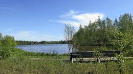 Haapajärven pitkospuiden varrella oleva levähdyspaikka sopii vaikkapa lintujen bongaukseen. Järveltä voi bongata silkkiuikun, haapanan, joutsenperheen tai harmaahaikarankin. Kesähelteellä järvi antaa lisämausteeksi väkevät hajut ja sinilevän kukinnan.
