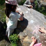Lemipikukan piitäminen kiveen.