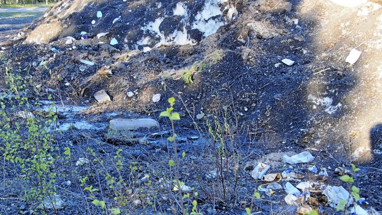 Lumen sulaessa paljastuvien roskien joukossa korostui kasvomaskien lukuisa määrä. Kuvan ottamisen jälkeen on alue kunnan ympäristötiimin toimesta siivottu, mutta sulamatonta lunta on kasoissa yhä, joten roskia on siivouksen jälkeenkin esiin ilmestynyt. Kuva: Ismo Piri