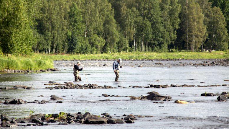 Juhani Aho ja Jukka Tuohino merkitsivät paikkoja uusille kutusorakoille Alakoskeen. Operaatiosta selvittiin kaatumatta ja kastumatta.