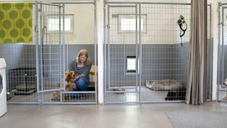 Terhi Repo perusti lemmikkihoitolan oman kotinsa pihapiiriin. Koirahoitola sijaitsee erillisrakennuksessa. Joka hoitolaiselle on oma tilava huone makuualustoineen.