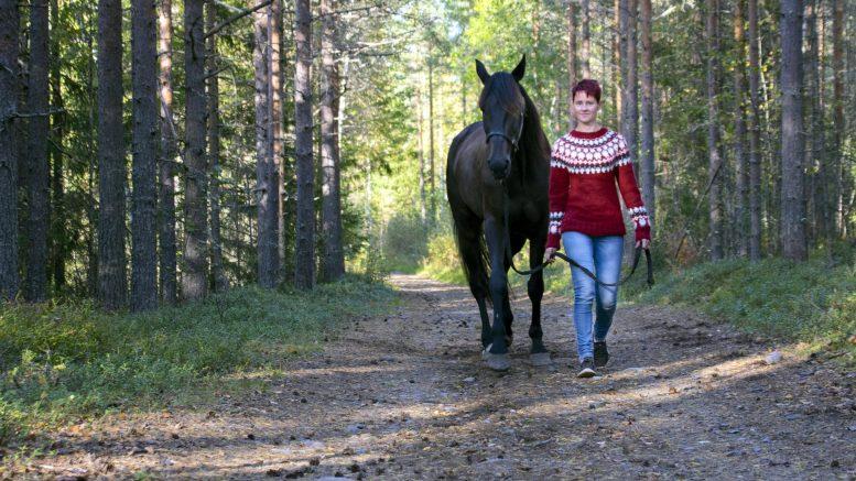 Maria Kurttila treenaa raviohjastajataitojaan kotona Iissä omien hevostensa kanssa. Tilaa treenata on kodin ympäristössä kulkevilla metsäpoluilla reilusti.