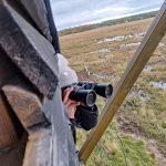 Kiikarointi on osa lintujen tarkkailua.