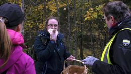 Ensi kertaa sienestämässä ollut Katri Väänänen yritti tunnistaa löytämäänsä sientä hajun perusteella.